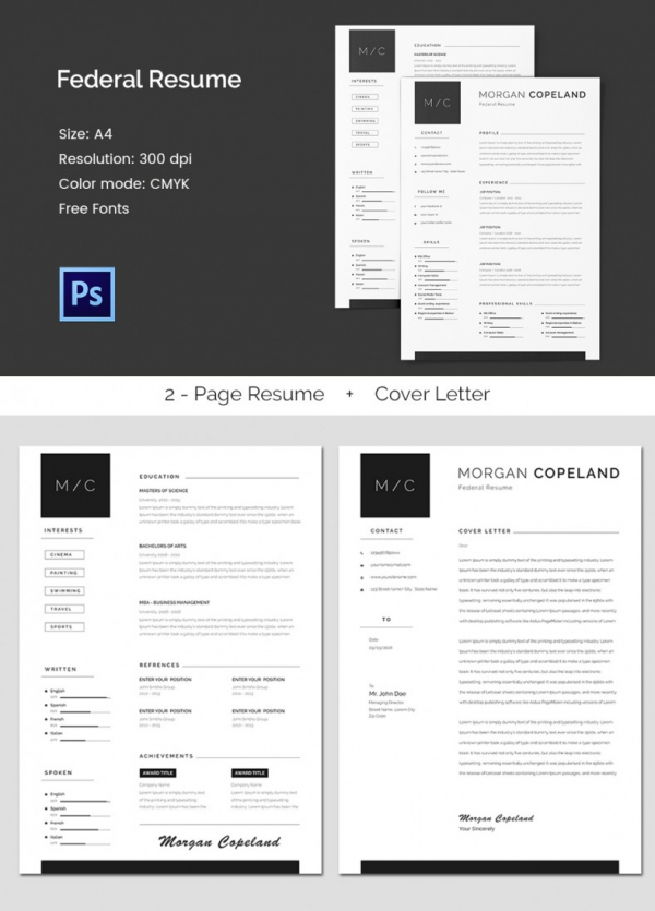 Federal A4 Resume Template