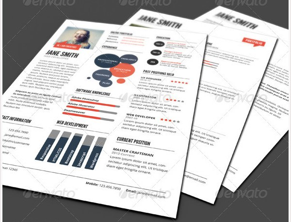 InfoGraphic Style Resume Template Ver 2