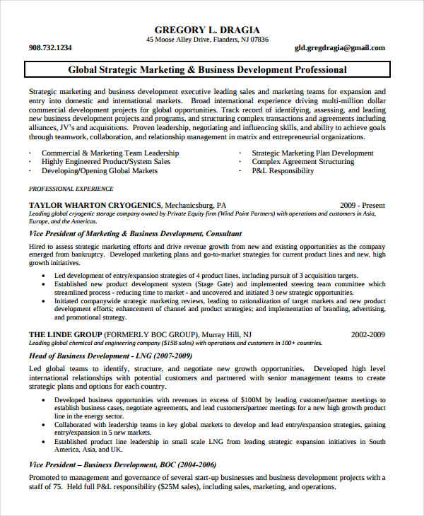 Marketing Business Development Resume