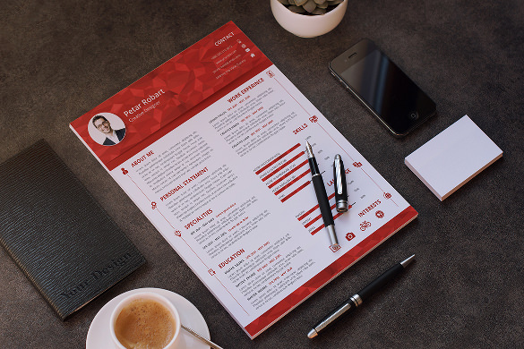 Professional Infographic Resume Template PSD Sample