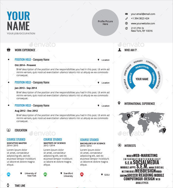 Professionally Designed Infographic Resume Template INDD Format