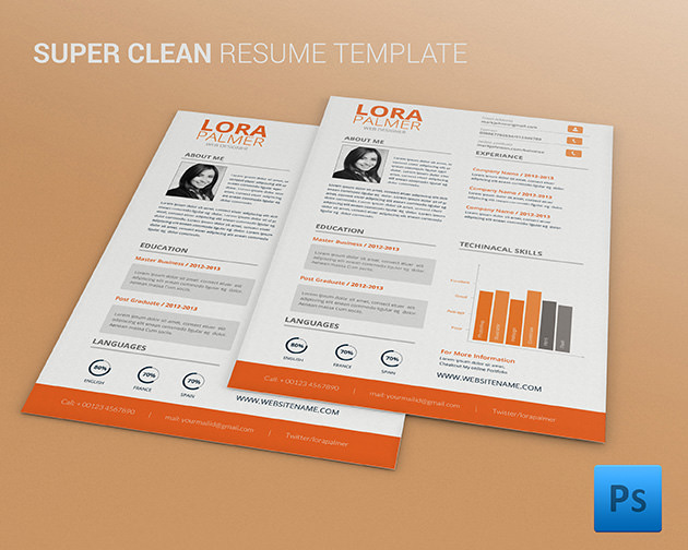 infographic resume template for successful job application
