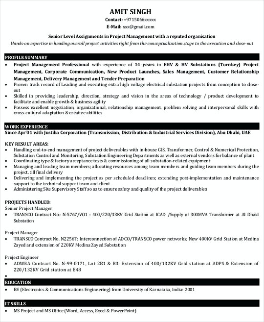 Project Manager resume template Sample