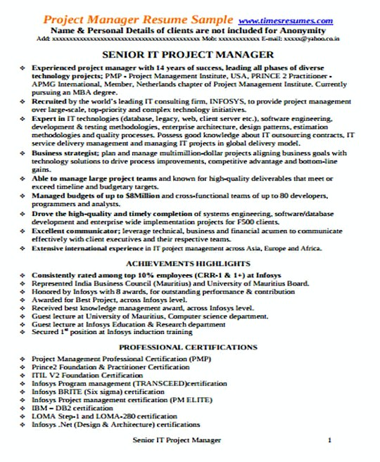 Senior IT Project Manager resume template