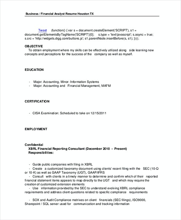 Business Financial Analyst Resume Template in PDF
