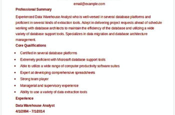 Data Warehouse Analyst Resume Template