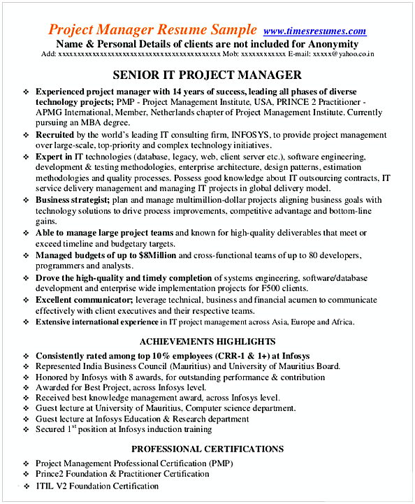 IT Project Management Resume