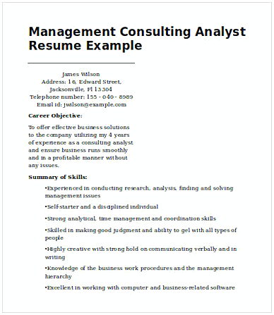 Management Consulting Analyst