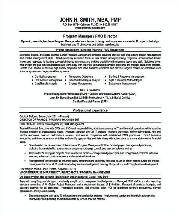 Program Manager Resume in PDF