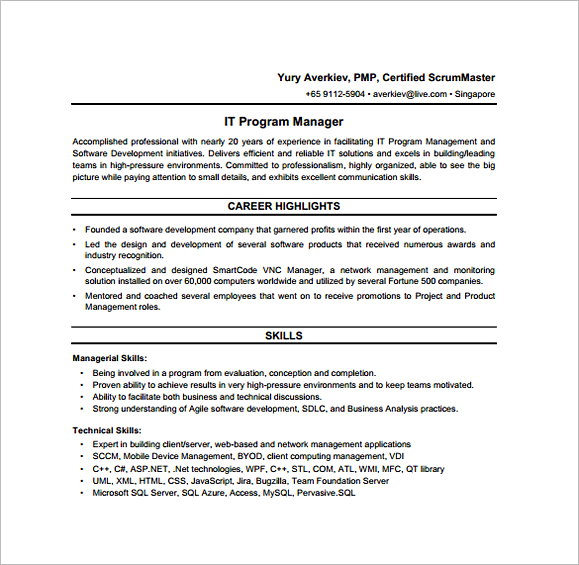 IT Program Regional Manager Job Description PDF Free Download
