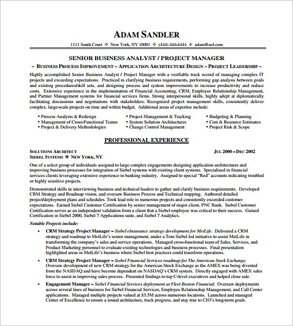 IT Project Manager Resume PDF Free Template 1