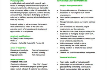 Project Manager Resume PDF Free Download