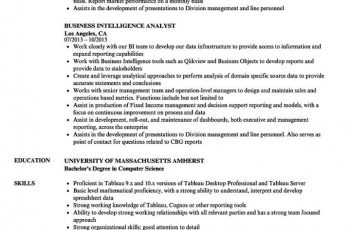 Business Intelligence Analyst Resume 1