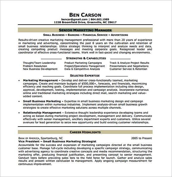 Senior Marketing Analyst Resume