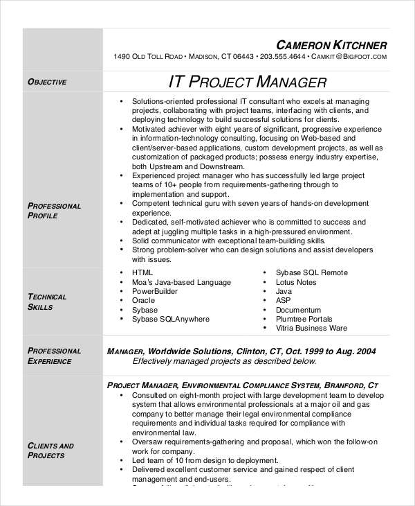 IT Project Manager Resume 1