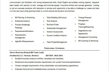 Junior Business Analyst Resume Word