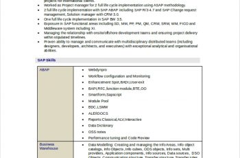 Technical Consultant Resume