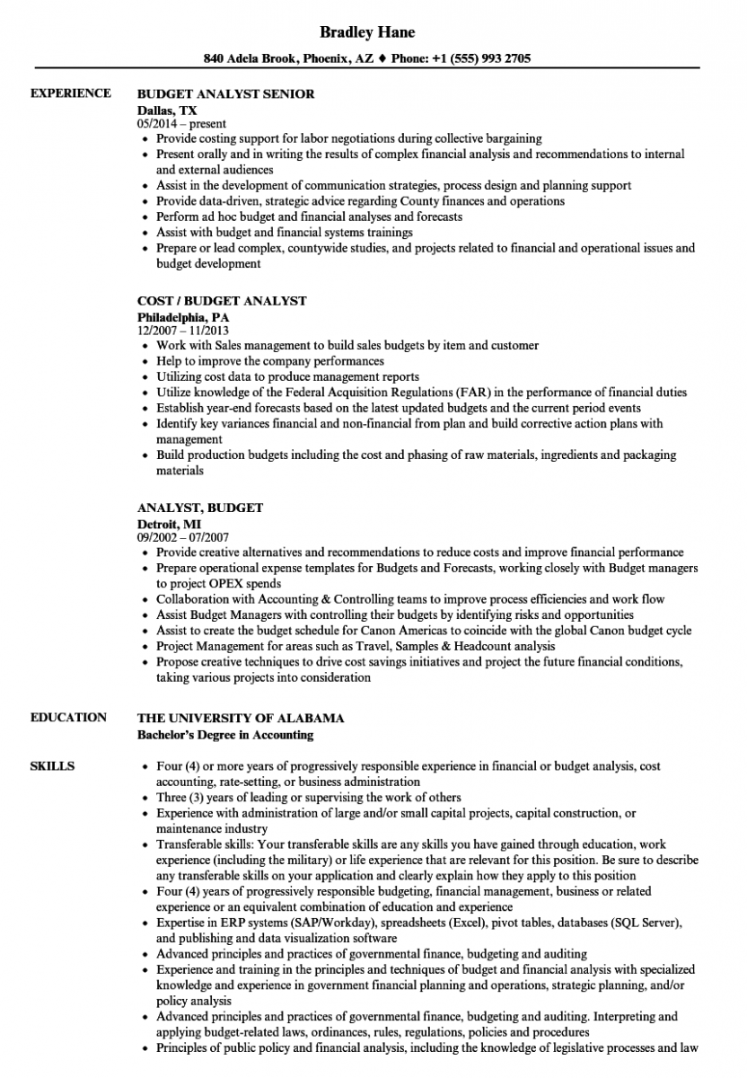 analyst budget resume sample