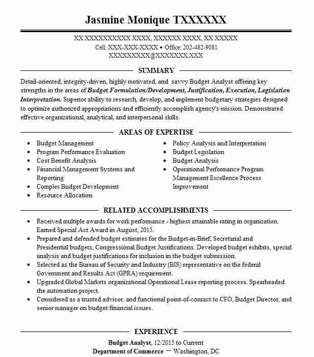 analyst budget resume