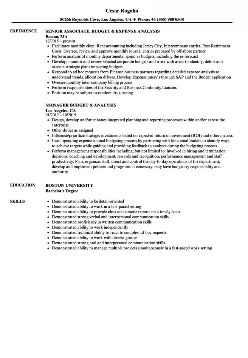 budget analysis resume sample