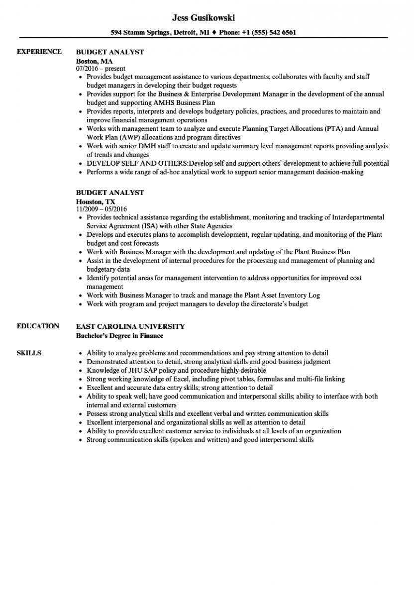 budget analyst resume sample