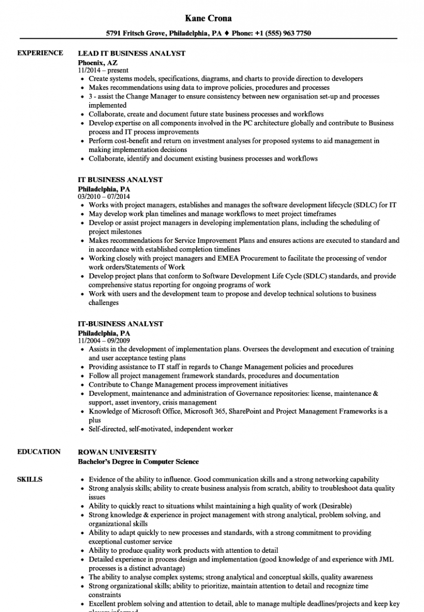 it business analyst resume sample