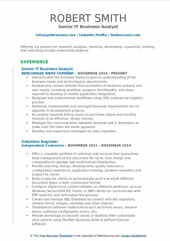 it business analyst sample resume