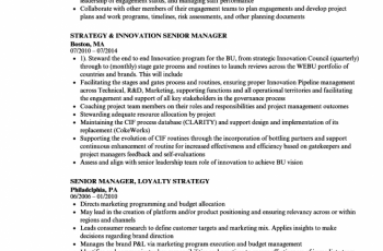 strategy manager senior manager resume sample