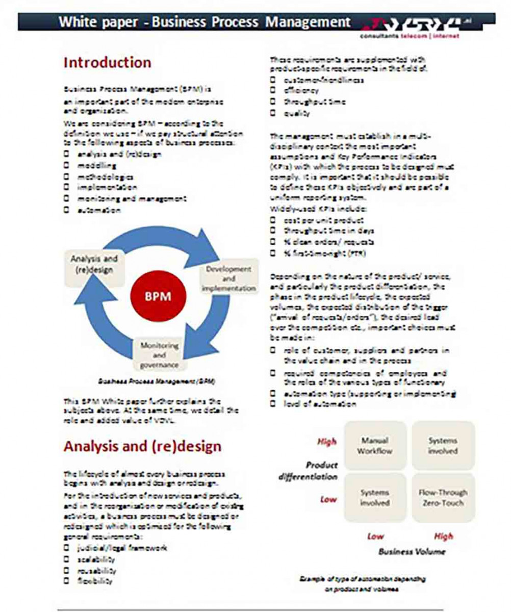 Business Process Management White Paper