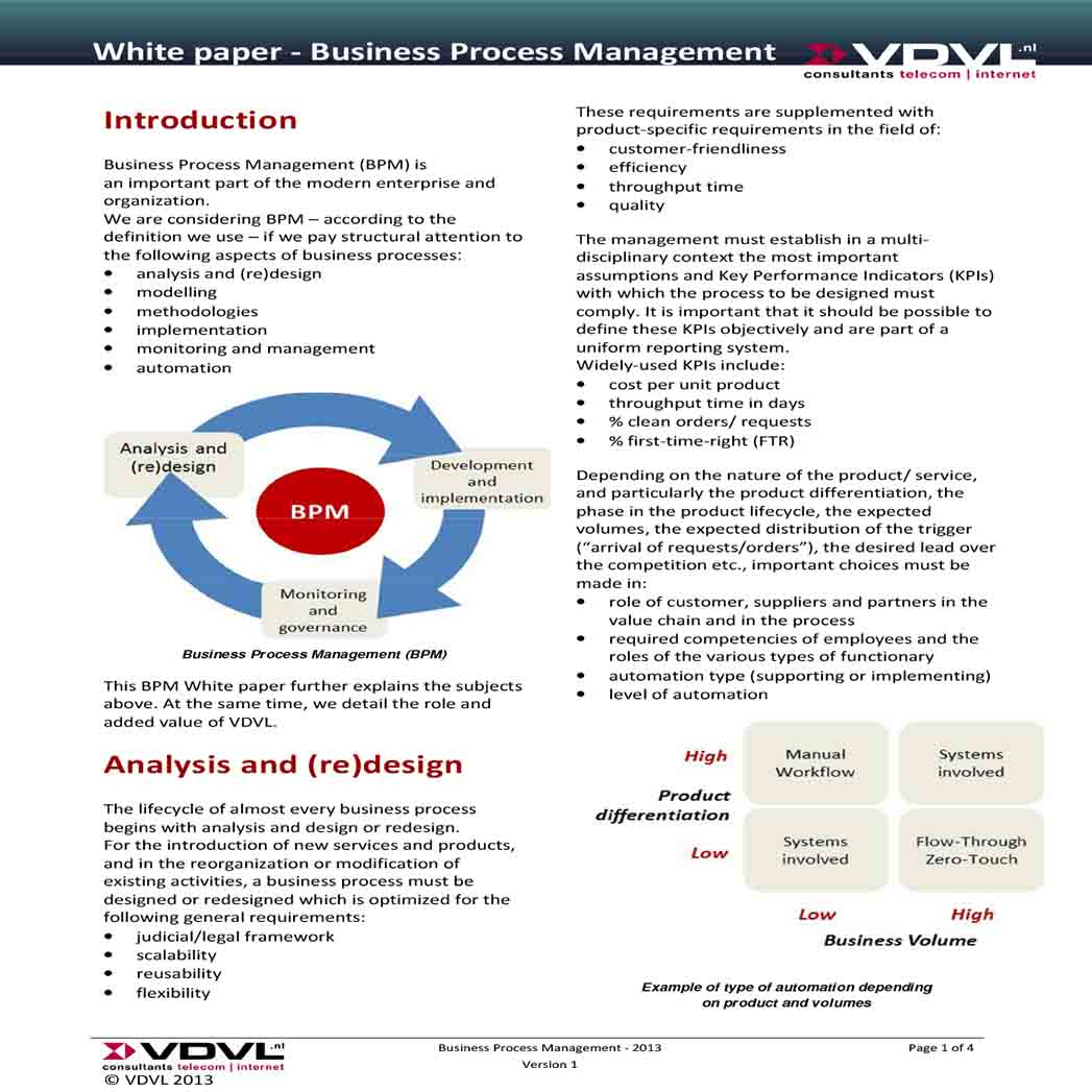 Business Process Management White Paper 1