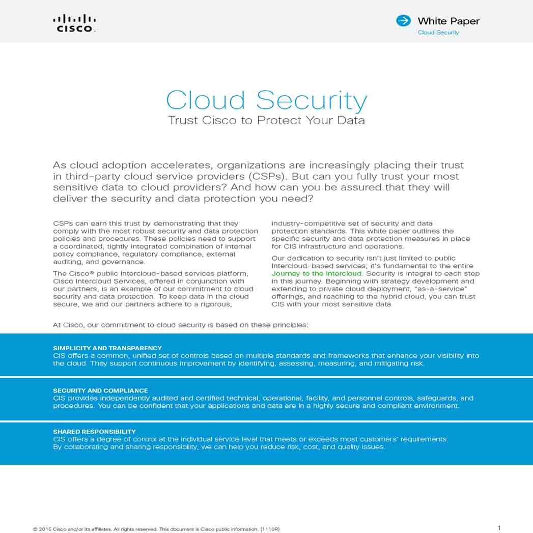 Cloud Security White Paper 1