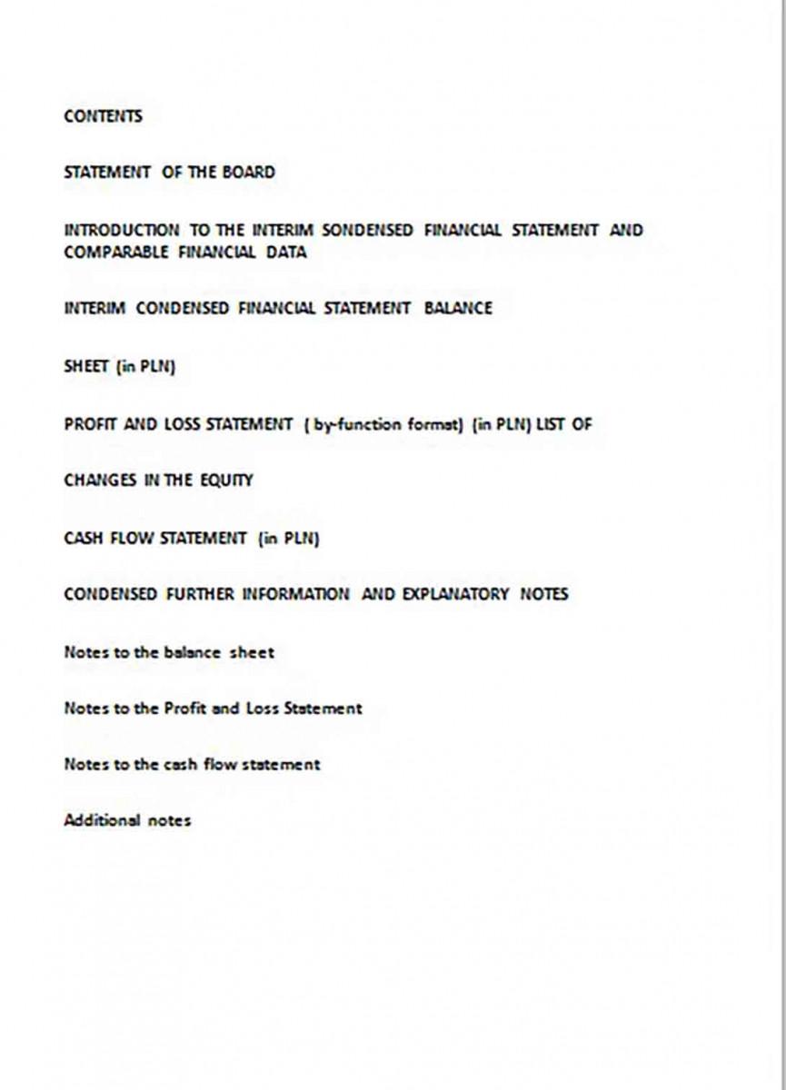 Financial Statement Software
