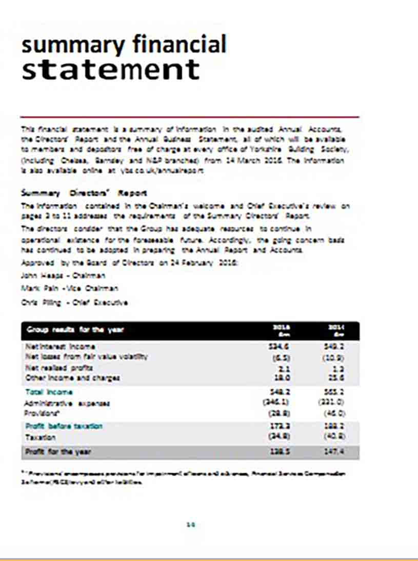 Financial Statement Summary Sample