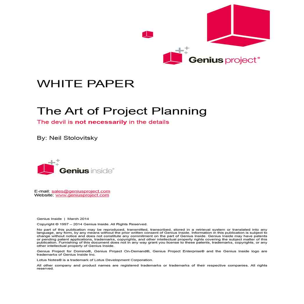 Project Plan White Paper 1