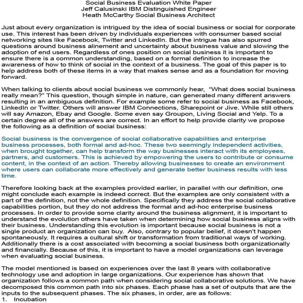 Social Business White Paper 1