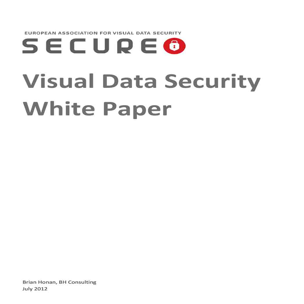 Visual Data Security White Paper 1