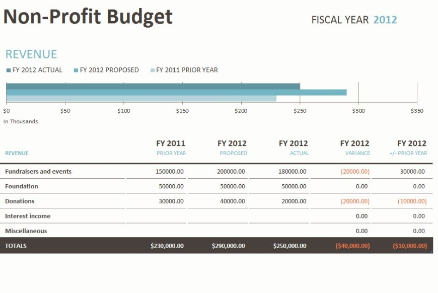 non profit budget template sample